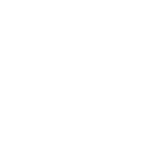 Fabian Esser Kooperation Shape Leadership